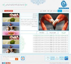 بهترین شرکت طراحی سایت قیمت طراحی سایت شرکت طراحی سایت در تهران طراحی سایت قیمت مناسب شرکت طراحی سایت